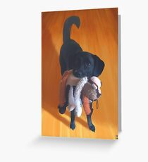 Nemo the Dog Greeting Card