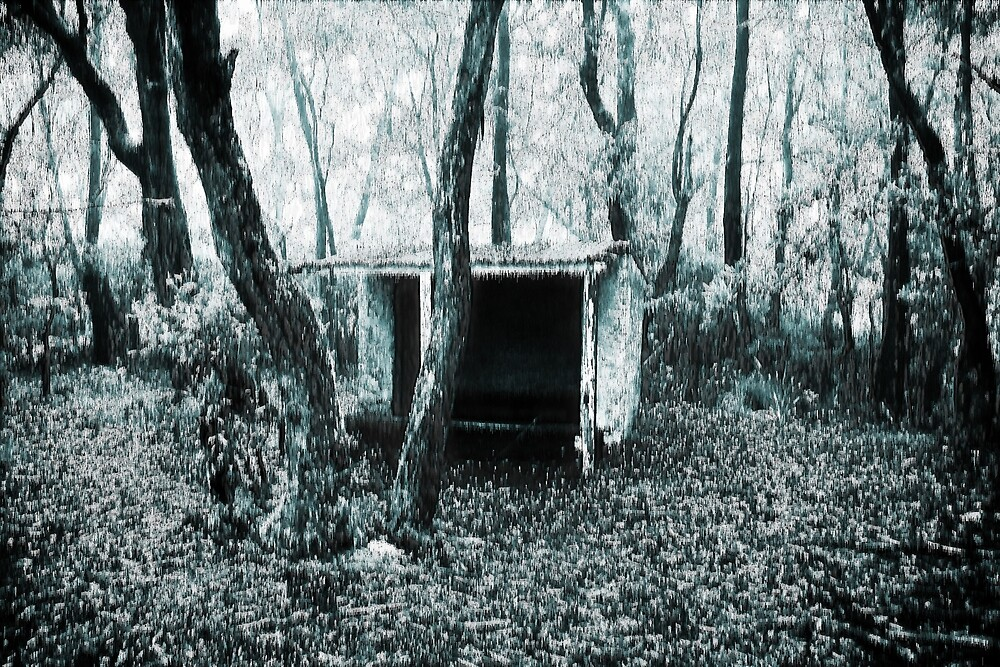 Old Waiting Shed In Blue Mountains by Elvin Certeza