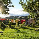 Laundry day by Dalmatinka