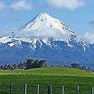 Mt Taranaki, New Zealand by Margaret  Hyde