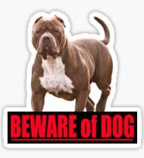 Beware of dog pit bull Sticker