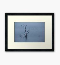 Misty Blue Framed Print