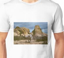Desert Rocks & Cholla Bush, Joshua Tree Monument, CA Unisex T-Shirt
