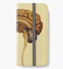 Sagittal Brain iPhone Wallet/Case/Skin
