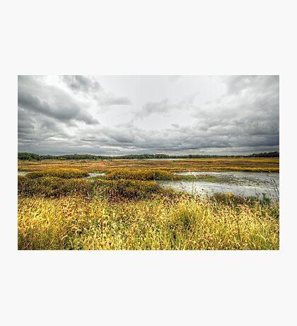 Autumn Salt Marsh - Bombay Hook National Wildlife Refuge - Delaware - USA Photographic Print