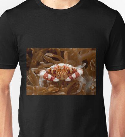 Harlequin Crab, Wakatobi National Park, Indonesia T-Shirt