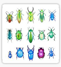 Metallic Beetles Sticker