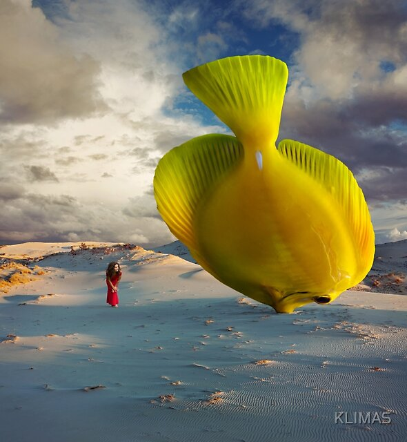 A Fish called Wanda by KLIMAS