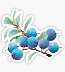 Blueberries Sticker