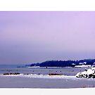 Winter In Rhode Island by Nancy Richard