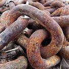 Rusted Chain by Martha Medford