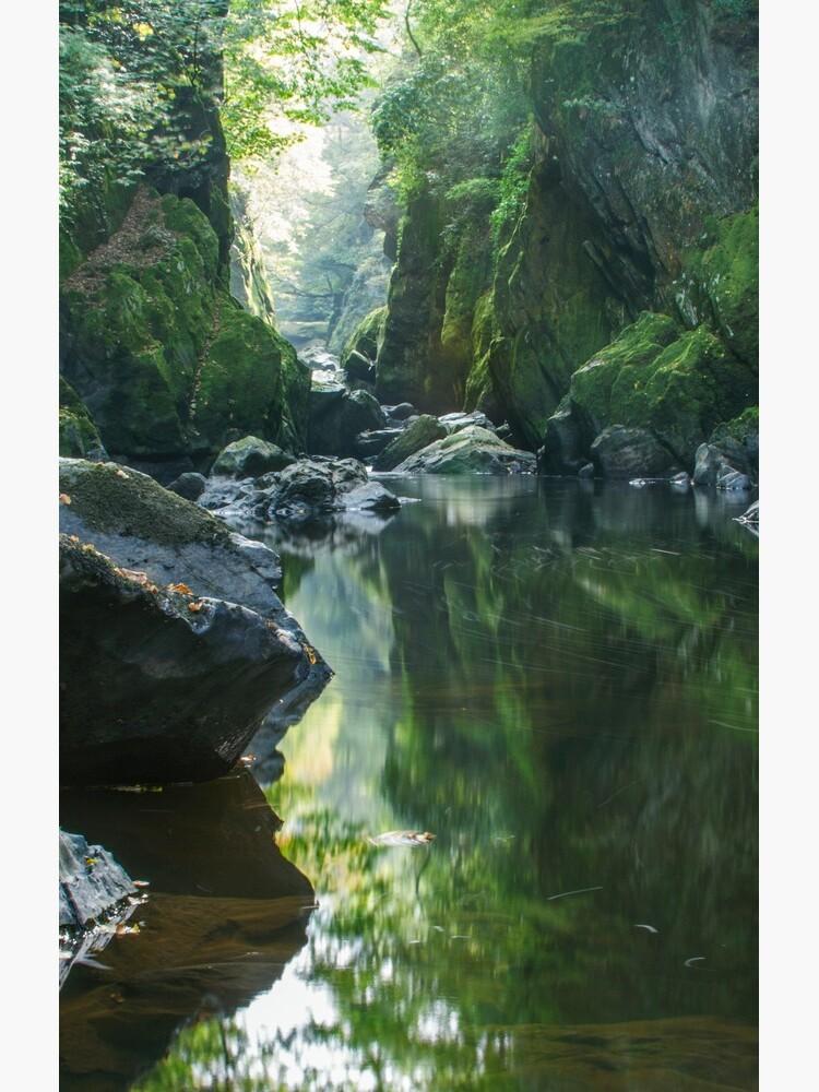 Wales - The Fairy Glen ,  Betws-y-Coed by AngelaBarnett