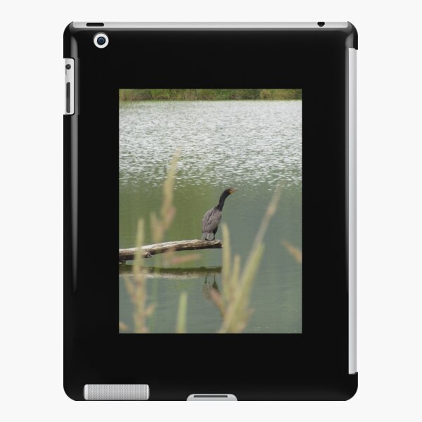 Double Crested Cormorant #2 iPad Snap Case