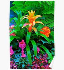 Fall Garden Blossom, Butchart Gardens, BC Poster