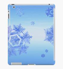 Fractal Snowflake Snowstorm iPad Case/Skin
