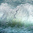 Wave Action by Barbara Burkhardt