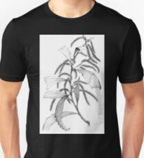 Wattle- Acacia leiocalyx T-Shirt