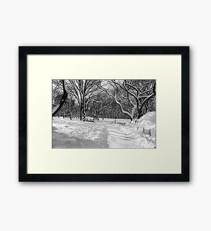 Winter Wonderland, Central Park Framed Print