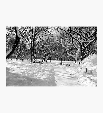 Winter Wonderland, Central Park Photographic Print