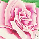 A Pink Rose by any Other Name by Kevin Dellinger