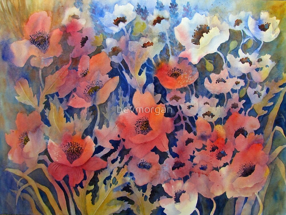 Ode to poppies by bevmorgan