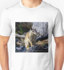 Dryandra Numbat Unisex T-Shirt