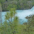 Huka Falls by Margaret  Hyde