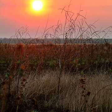 Sunset through the smoke of a grass fire  by martybugs