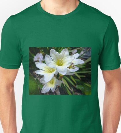 Ixias - White -Yellow Centre - Oct. 2010 T-Shirt