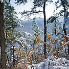 Snow in the Moutains of South Korea by koreanrooftop
