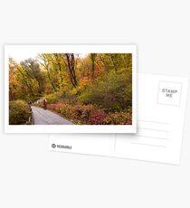 Fall Colour in Namsan in Seoul Postcards