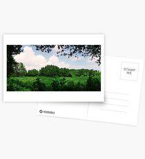 Farmland on Jeju Island Postcards