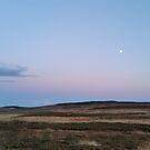 Moon Moor by Richard Winskill
