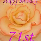 Happy 71st Birthday Flower by martinspixs