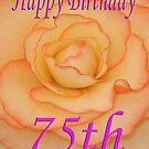 Happy 75th Birthday Flower by martinspixs