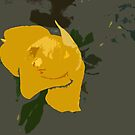 Yellow Rose Abstract by AnneDB