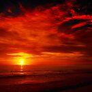 Swimming at sunset by Susan P Watkins