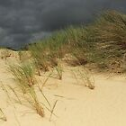 Henty Dunes, Tasmania by Ursula Rodgers Photography
