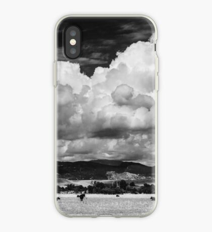 Colorado Cattle Ranch In Black and White iPhone Case