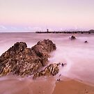 Palm Cove #1 by Dieter Tracey