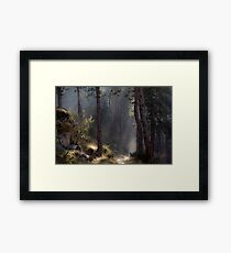 Magical forest. Rhodope Mountains, Bulgaria Framed Print