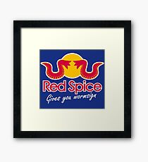 Red Spice Framed Print