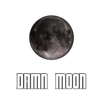 Damn moon by lleganyes