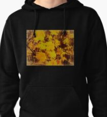 Front and Centre Stage  Pullover Hoodie