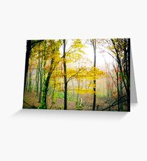 Enchanted Autumn Woods Greeting Card