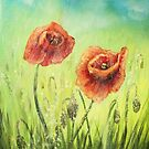 Summer Poppies by Agnieszka A. Jargiello