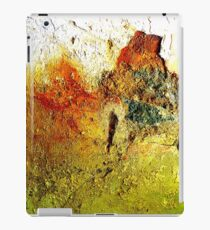 Donegal By Vincent Van Morrison iPad Case/Skin