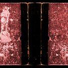 MYST - Red Prison Book by cfischer83