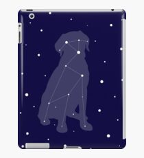 Lab Constellation iPad Case/Skin