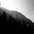 Yosemite National Park by David Mellor
